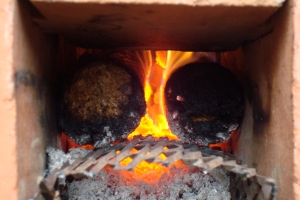 2 briquette feed closeup